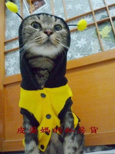 【皮蛋媽的私房貨】貓咪/狗狗☆蜜蜂裝☆寵物衣服 小蜜蜂裝//變身裝-連帽-BEE