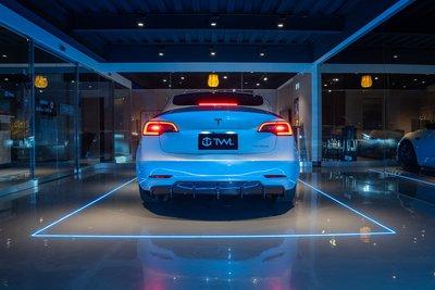 TWL台灣碳纖 TESLA 特斯拉專用 輕量高效能 鋰鐵電池 Model3 ModelX SR LR