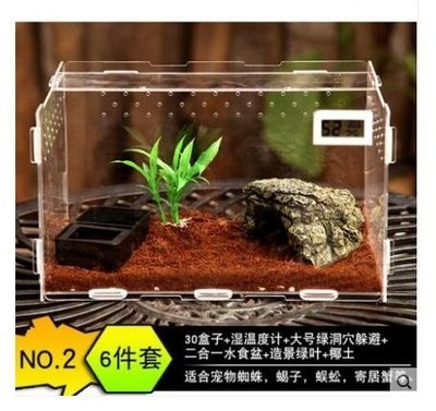 發現美 爬蟲箱亞克力蜘蛛爬蟲盒守宮蜥蜴透明爬蟲飼養箱爬寵盒甲蟲寄居蟹 30*20*15