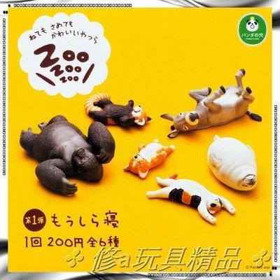 ✤ 修a玩具精品 ✤ ☾日本扭蛋☽ T-ARTS 熊貓之穴 休眠動物 全6款 柯基表示 還是躺著舒服 附蛋殼