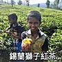 錫蘭獅子紅茶 780元/ 斤 斯里蘭卡 錫蘭 紅茶...
