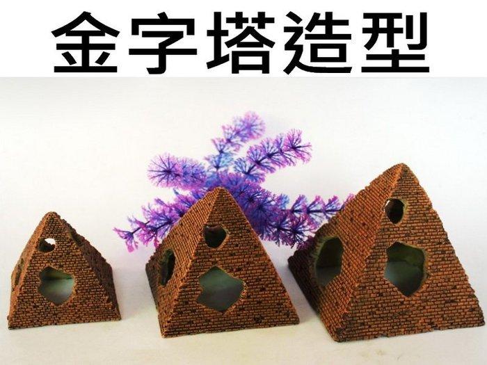 埃及 金字塔 造景 螯蝦 水晶蝦 龍蝦 香吉士 短雕 小號