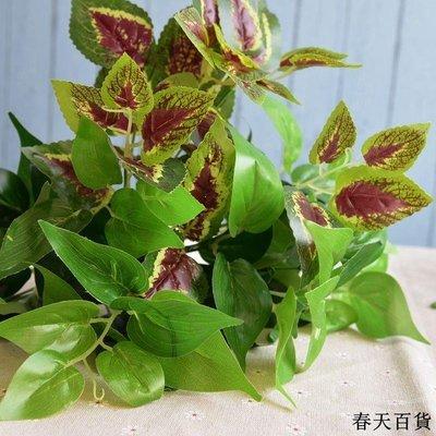客廳插花籃 竹編藤花籃 編織花籃 儲物籃 仿真植物假植物綠植室內外裝飾假花干花植物墻裝飾