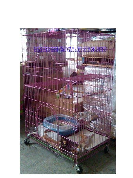◎酷比寵物精品生活館─1館◎台灣製造㊣粉體雙層大貓籠