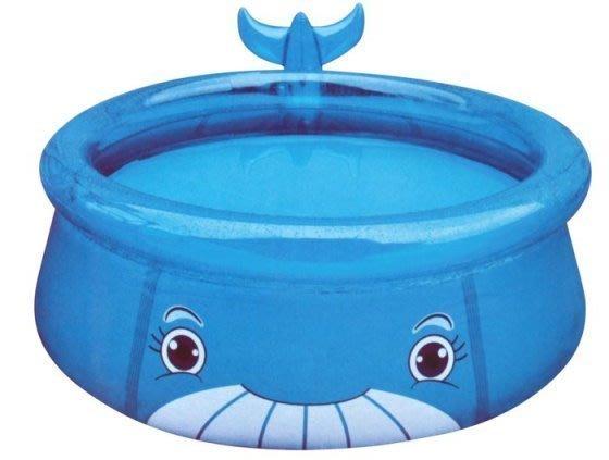 @企鵝寶貝二館@親親-鯨魚水池 泳池 戲水池 球池 遊戲池 充氣泳池 (SPWP01-175)-可議價