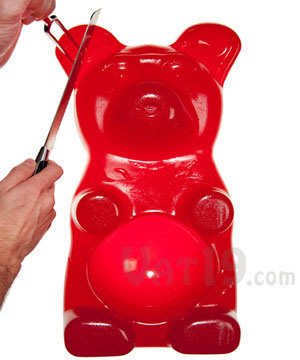 【Sunny Buy】◎預購◎26磅派對大熊軟糖! The 26-Pound Gummy Bear