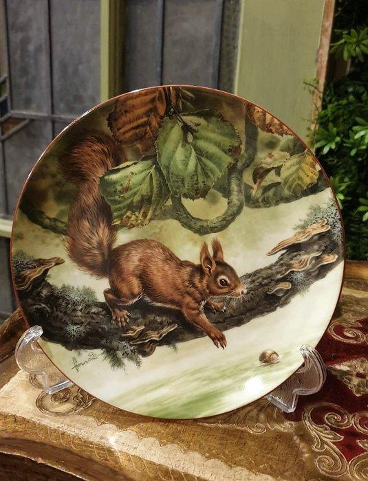 【卡卡頌  歐洲古董】WEDGWOOD 緯緻活  英國(老件未用) 藝術家 簽名 松鼠 裝飾盤  p1746 ✬