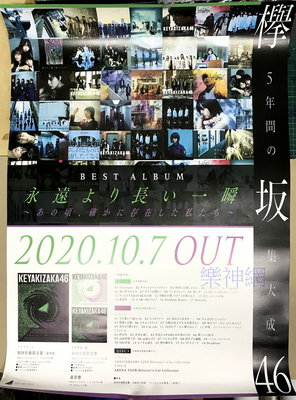 欅坂46 比永遠更長的一瞬間~那時確實存在過的我們【日版宣傳海報】全新