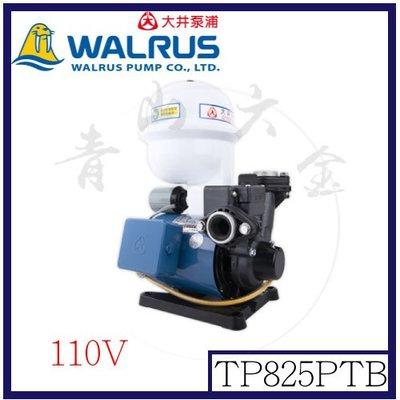 『青山六金』附發票 大井泵浦 TP825PTB 1/2HP 全電壓 附溫控開關 無水斷電 不生鏽塑鋼材質
