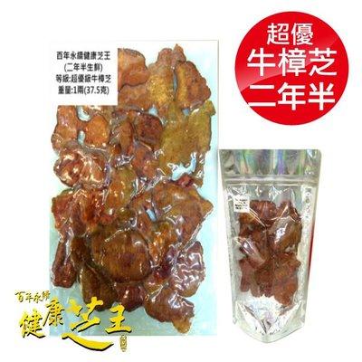 專品藥局 百年永續健康芝王 (兩年半) 超優級牛樟芝/菇 生鮮品 37.5g x1兩【2012409】
