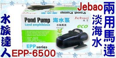【水族達人】捷寶Jebao《淡海水兩用馬達.EPP-6500》水陸兩用馬達/ 沉水馬達/免運費