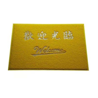 金黃色地墊風水地毯平安進門口除塵墊絲圈歡迎門墊防滑腳墊3A定制室內客廳臥房地毯