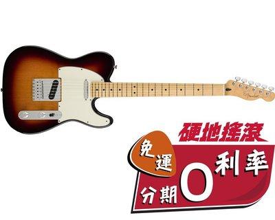 【硬地搖滾】2018最新系列!Fender Player Telecaster 單單 電吉他 楓木指板 有多種顏色