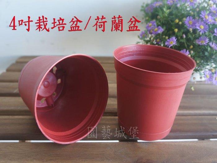 【園藝城堡】4吋栽培盆 荷蘭盆 紅色圓型盆 紅盆  草花用盆 花盆
