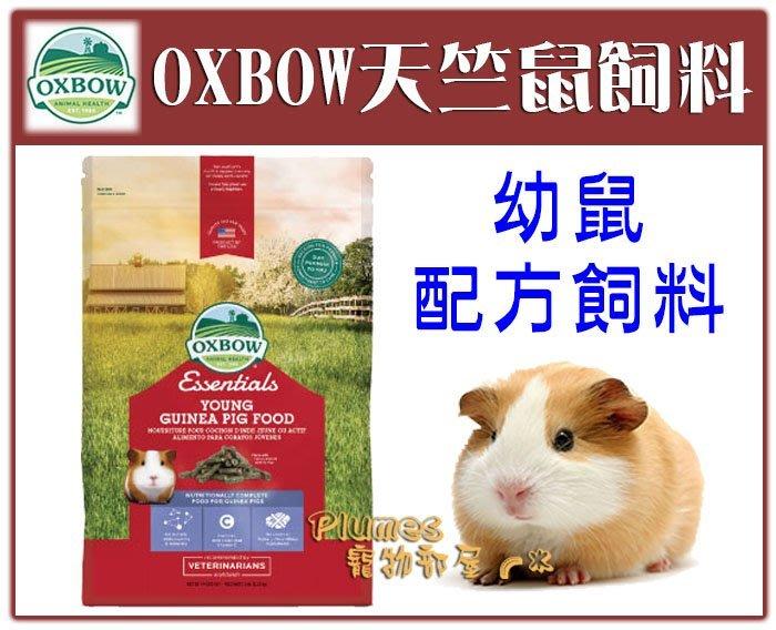 【Plumes寵物部屋】美國OXBOW《天竺鼠幼鼠配方飼料》5磅-天竺鼠 幼鼠飼料 鼠飼料 【可超取】