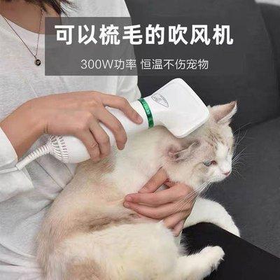 《現貨》寵物吹風機 寵物吹整機 梳毛一機兩用吹整機 二合一 針梳 美容梳 細毛梳 貓 狗 110v