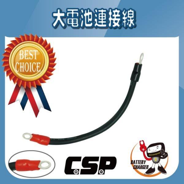 (鋐瑞電池) 大電池連接線 145G51 210H52 115F51 N150 N200 N120 N220 汽車電池