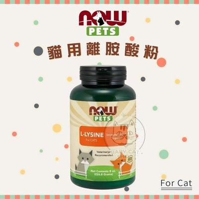 NOW PETS每朝保健【貓用離胺酸粉/8oz】