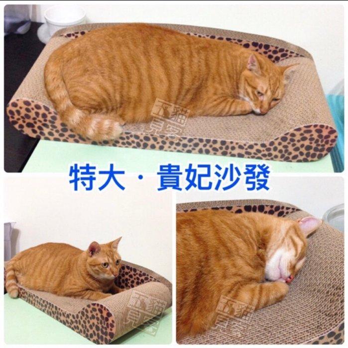 【宅配免運】特大貴妃沙發 貓抓板 貓睡床 貓咪 貓玩具 貓抓屋 瓦楞紙 貓沙發 送貓薄荷 送貓草 五貓見客