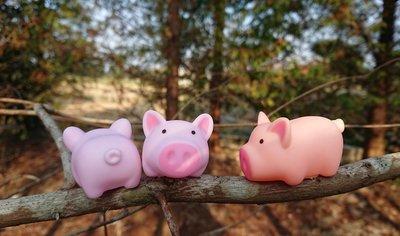 減壓玩具 舒壓小物 捏捏樂 捏捏叫玩具 會叫的小豬 兒童玩具