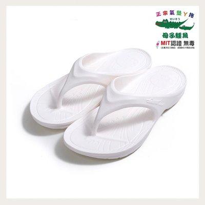 [沅陵商城]三代進階款 母子鱷魚拖鞋