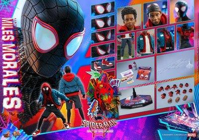 《瘋樂模玩》預購21年第三季野獸國 Hot Toys MMS567 蜘蛛人:麥爾斯•莫拉雷斯 訂金1500尾款6700