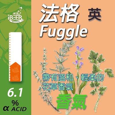 啤酒王自釀啤酒原料器材,Fuggle 法格 香氣啤酒花 Hop 精釀啤酒 啤酒王1oz