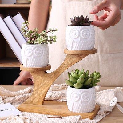 莉迪卡娜~MiMiHome多肉植物花盆陶瓷 白瓷花盆創意簡約辦公室桌面花盆