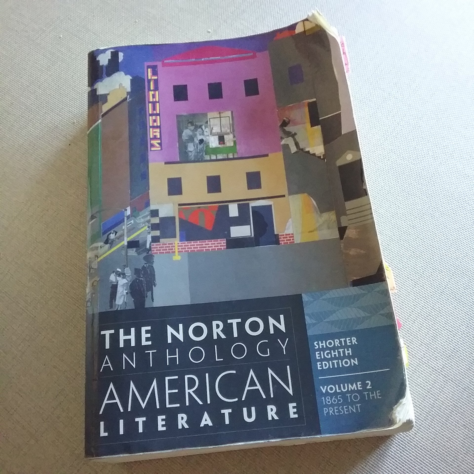 American literature 美國文學大學書籍原文書籍