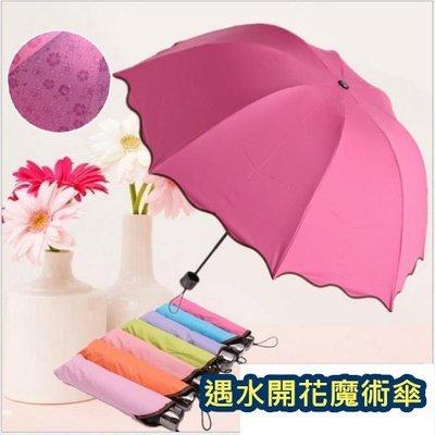 遇水開花魔術傘 韓國熱銷  黑膠防曬 抗UV洋傘 折傘 晴雨傘 遮陽傘 荷葉邊 公主傘 遇水開花 雨傘