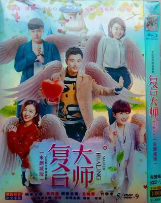 外貿影音 高清DVD  復合大師 /  賈乃亮 王曉晨 代樂樂 / 情感劇DVD