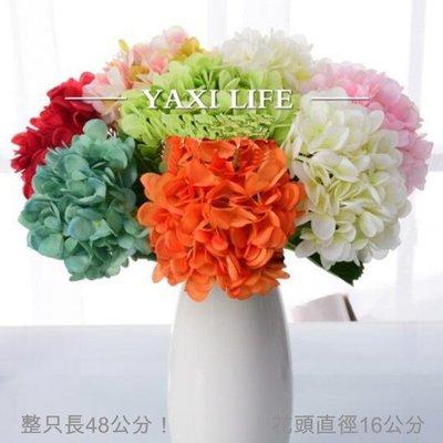 5Cgo【樂趣購】5533028186...