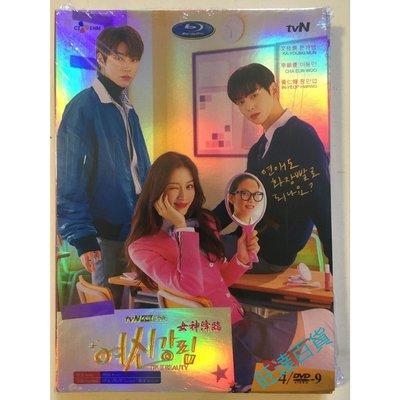 韓劇 女神降臨 DVD 高清 全新盒裝 4碟