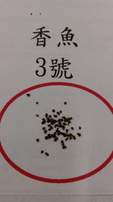 香魚飼料 3號 (1公斤/包)