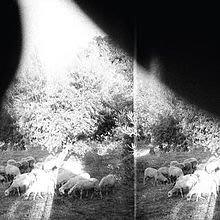 @90 新CD Godspeed You! Black Emperor - Asunder Sweet (2015
