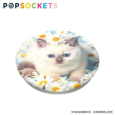 美國原裝正品【 PopSockets泡泡騷二代 PopGrip 】手機支架 - 小貓咪