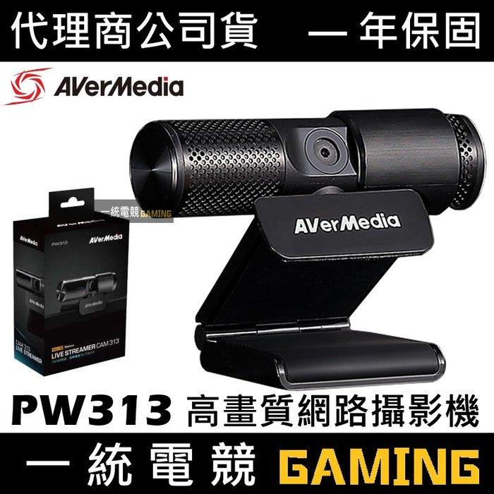 【一統電競】圓剛 PW313 Live Streamer CAM Full HD 1080p 高畫質直播網路攝影機