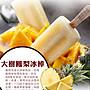 [現貨免運]【百年枝仔冰城】傳統風味冰棒饗宴禮盒加碼贈芒果脆皮雪糕2枝
