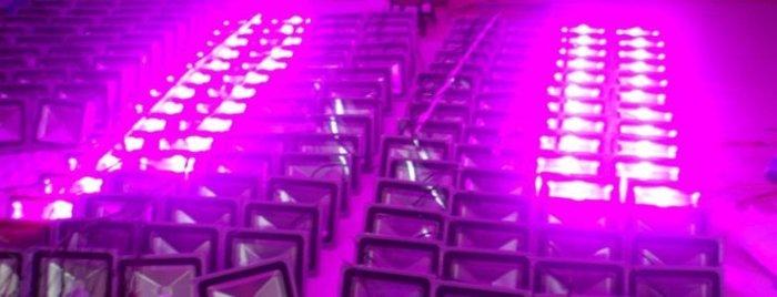 植物生長燈:LED燈大棚種植全光譜:30W防水植物補光生長全光譜投射燈