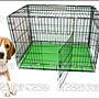 *Nicole寵物*二尺半雙門摺疊狗籠-黑色密底【雙開+側抽】2.5尺鐵籠,雙層烤漆籠,靜電,折疊式,貓籠,兔籠,寵物籠
