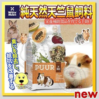 【??培菓寵物48H出貨??】荷蘭偉特PUUR》純天然天竺鼠飼料-2.5kg 特價499元自取不打折