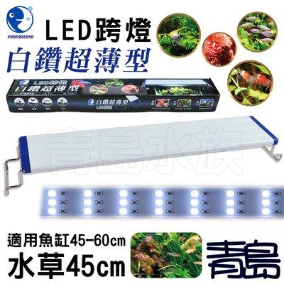 Y。。。青島水族。。。YX-45台灣paopaozone泡泡龍---白鑽超薄型LED跨燈 白光 全白燈==水草45cm 新北市