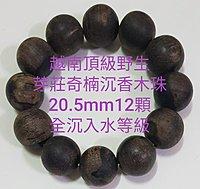 越南頂級野生(芽莊奇楠沉香)~沉香木