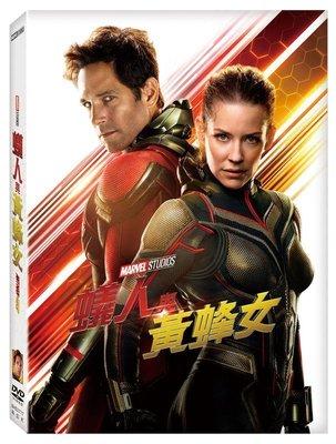 <<影音風暴>>(全新電影1811)蟻人與黃蜂女  DVD  全118分鐘(下標即賣)48
