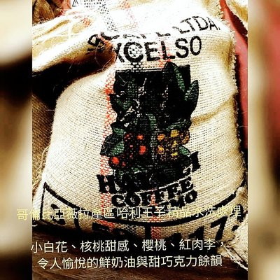 咖啡生豆(500克) 哈利王子  薇拉省產區 水洗 哥倫比亞咖啡豆 當季生豆  波雷克堤咖啡 每單限重4公斤