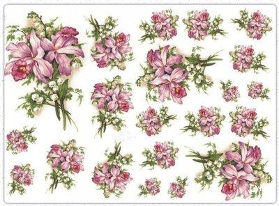 波蘭 Decoupage Paper(專用紙)A3編號PL-D-0332~蝶古巴特 餐巾紙拼貼 彩繪 黏土DIY手作材料