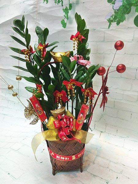 過年必備 擺設 送禮 年節提籃金錢樹盆栽