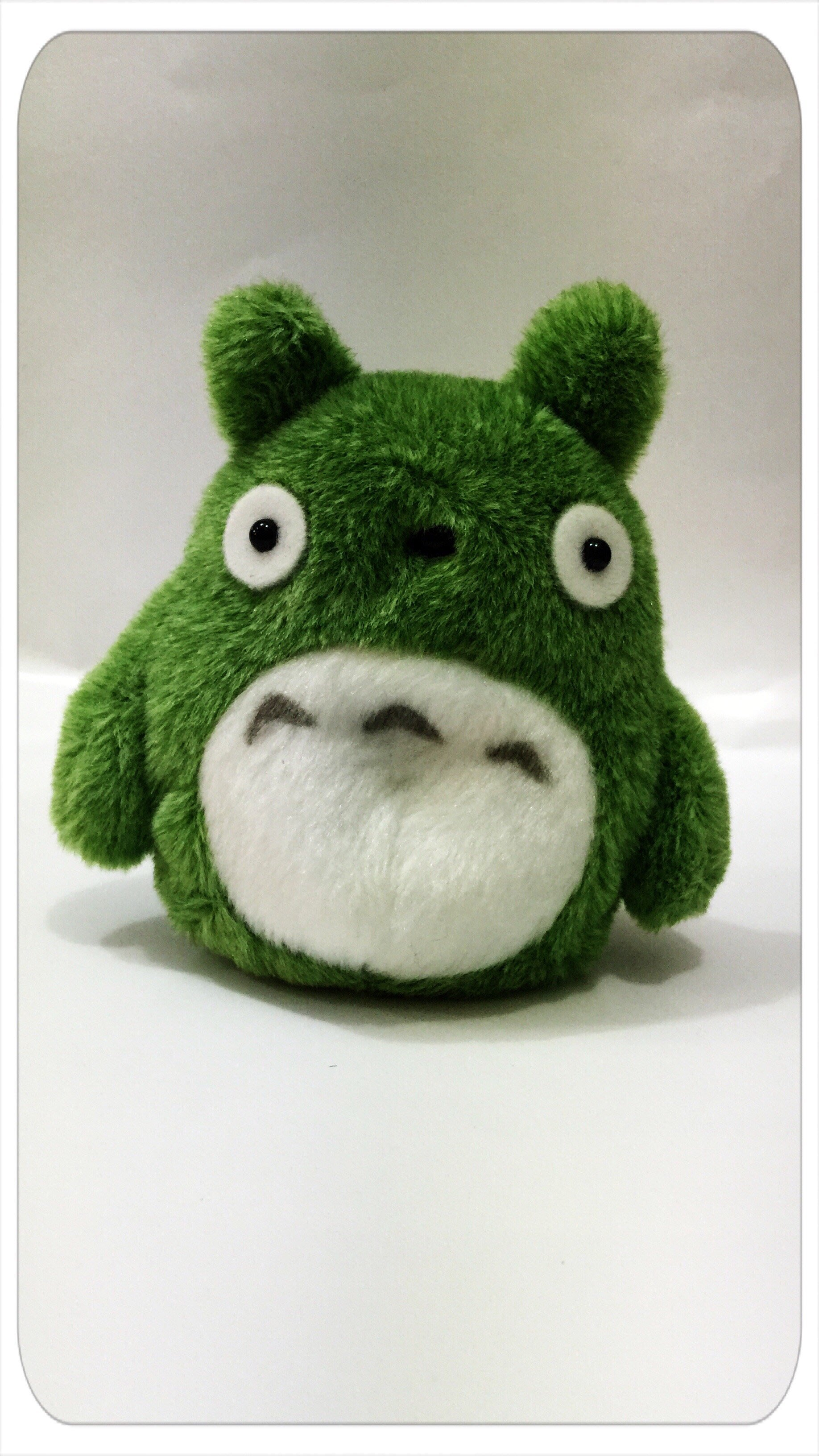 GIFT41 4165本通 三重店 TORORO綠色龍貓沙包玩偶 4974475594837