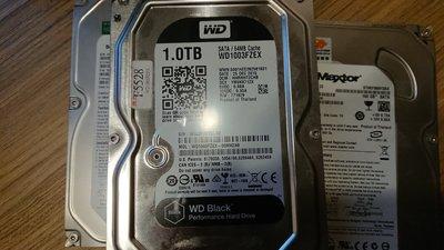 操你媽的 1000元啦 要存A片用快來買 1TG威騰黑標快速硬碟WD1003FZEX快取64 7200轉3.5吋