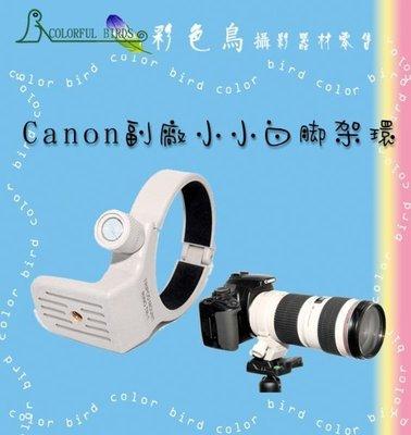 彩色鳥 Canon EF 70-200mm F4L / 70-200mm F4L IS 小小白 腳架環  canon 腳架環canon 70-200mm f4 1